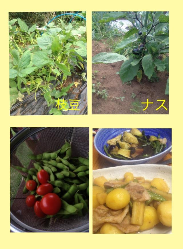 お野菜おいしーい♡